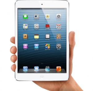 iPad Mini in Hand gehalten